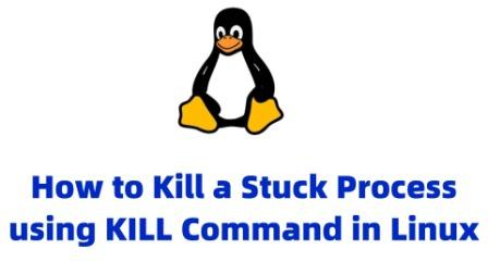 kill command linux stuck process
