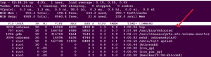 top command in linux absolute path of process