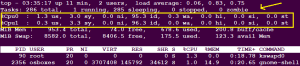 top command in linux -cpu