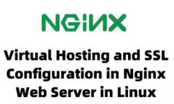 Virtual Hosting and SSL Configuration in Nginx Web Server in Linux