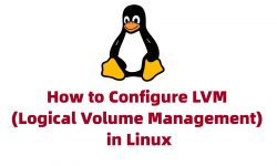 How to Configure LVM (Logical Volume Management) in Linux